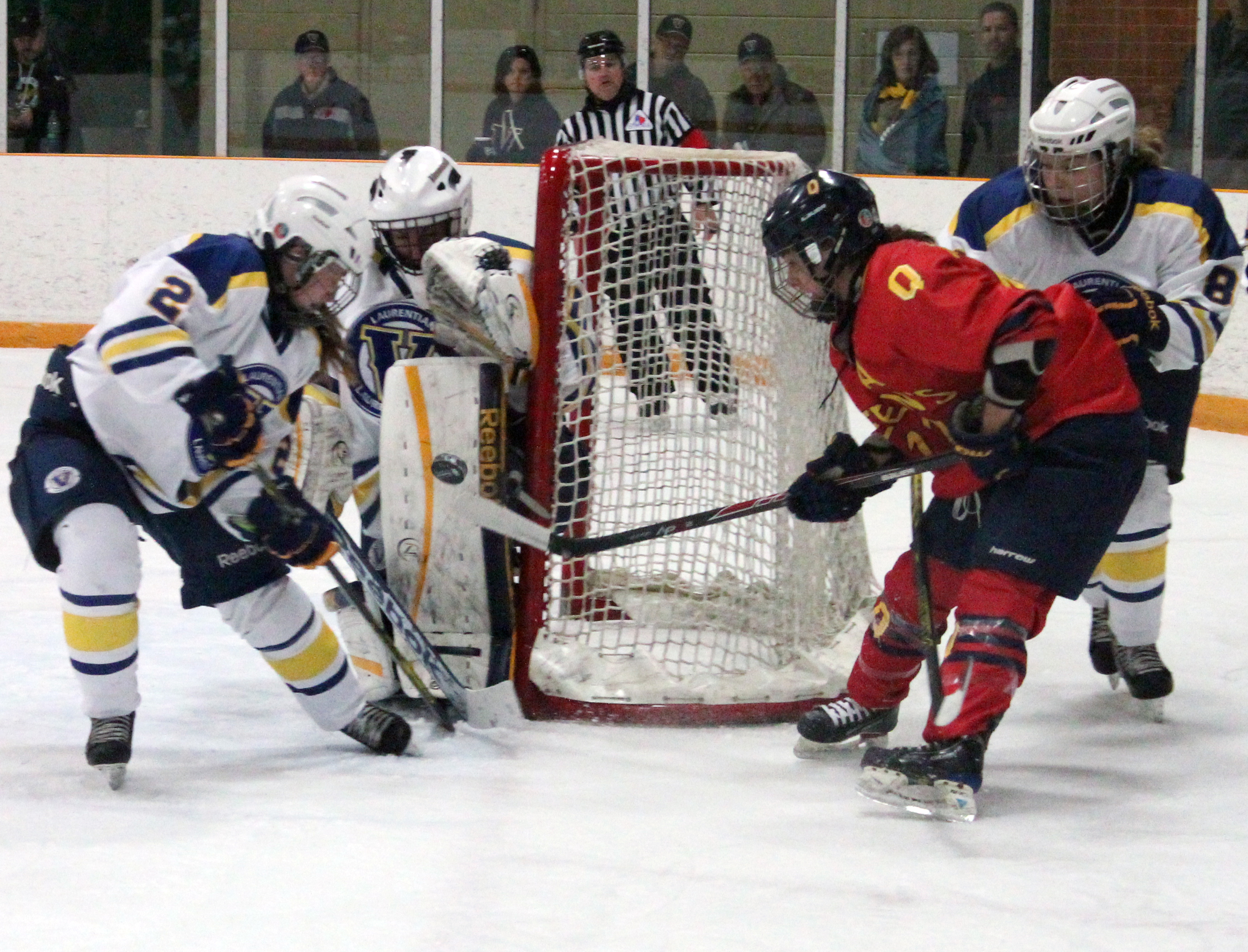 The Laurentian Voyageur's women's hockey team plays against Queens on Nov. 2. Photo by Gabriel Rodrigues.